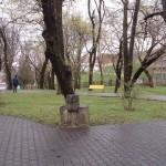 Dezbatere publică organizată de Primăria Aiud privind reabilitarea parcului municipal