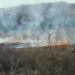 Incendiu de vegetație uscată la Gîrbova