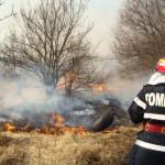 Intervenție a pompierilor militari din Aiud, pentru stingerea unui incendiu de vegetație uscată izbucnit la Măgina