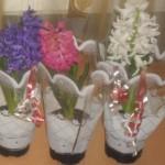 Zeci de ghivece cu flori confiscate de polițiști la Aiud