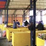 Joi, 30 aprilie: Licitație publică pentru închirierea locurilor de vânzare în piața agroalimentară din Aiud