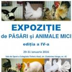 Între 29 și 31 ianuarie are loc la Aiud cea de-a IV-a ediție a Expoziţiei de păsări şi animale mici. Vezi programul evenimentului