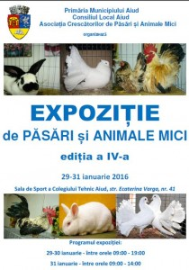 expozitie-pasari-animale-mici-aiud-editia-IV