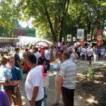 Parcul din Ciumbrud invadat de parfum și culoare la cea de-a XV-a ediție a Zilei Rozelor