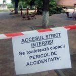 """Concluzia anchetei SPAPL Aiud, în cazul castanului prăbușit în parcul municipal: """"Desprinderea crengii a survenit în urma ploilor abundente din ultima perioadă"""""""