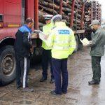 Tânăr de 23 de ani din Aiud sancționat contravențional, după ce a fost surprins în timp ce transporta 5,1 metri cubi de material lemnos fără documente de proveniență