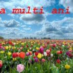 Nume de femei și bărbați care se sărbătoresc de Florii | aiudinfo.ro
