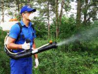 Primăria Aiud anunță cetățenii ca marți, 2 mai 2017, se vor efectua tratamente fitosanitare pentru combaterea dăunătorilor