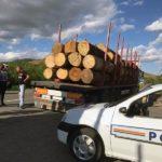 Bărbat din județul Bistrița surprins de polițiștii din Aiud, în timp ce transporta, fără acte, 33.5 metri cubi de material lemnos, pe DJ 750C