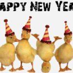 MESAJE SMS de Anul Nou 2018 haioase. Urări și Felicitări amuzante pe care le puteți transmite celor dragi | aiudinfo.ro
