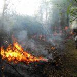 24 mai 2018: Exercițiu pentru gestionarea situaţiilor de urgenţă generate de incendii la pădurile la Ocoliș și Poșaga