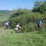 Rangeri englezi lucrează cot la cot cu sătenii din Gârbovița pentru curățarea unor livezi și pășuni care au fost năpădite de arbuști