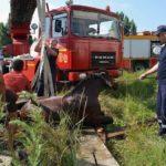 Intervenție a pompierilor militari din Aiud la Ocnișoara, după ce un cal a căzut într-o fântână