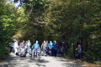 Angajați ai Primăriei Aiud au participat ieri, 18 septembrie 2019, la o acțiune de ecologizare a Pădurii Sloboda
